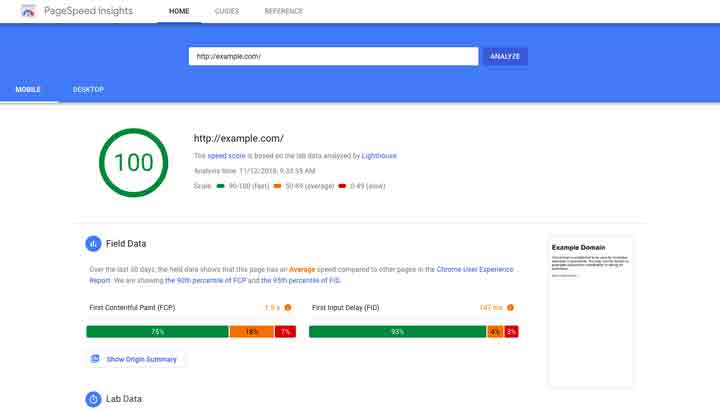 przyklad google page speed insights